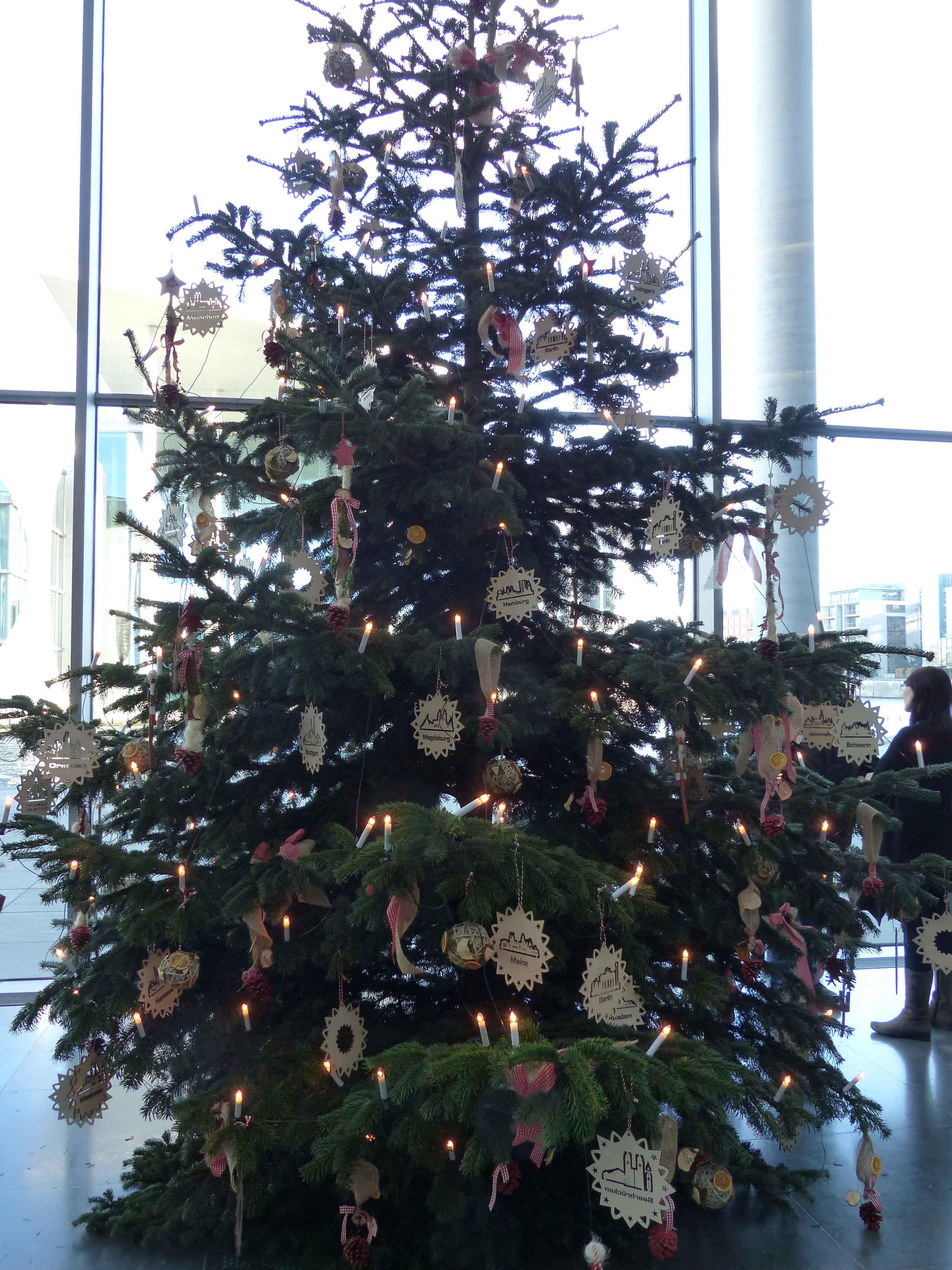 Wer Schmückt Den Weihnachtsbaum.Herforder Baumschmuck Schmückt Den Weihnachtsbaum Im Bundestag